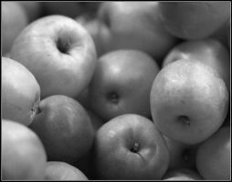 Aamodt's Apples by tjackson80