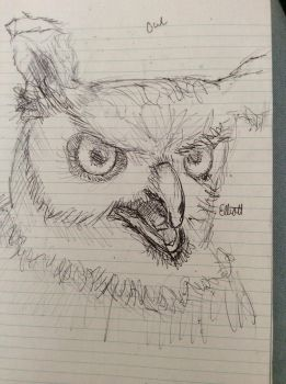 Sketch study: Owl by Epic-sketches