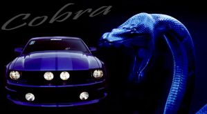 Mustang Cobra by jt87