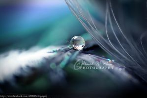 story of a bubble by ahmedwkhan