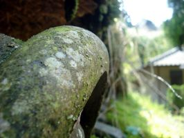 mossy roof tile by PCStudio
