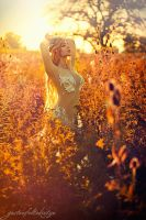 Summer Sunset Fairy by gestiefeltekatze