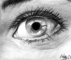 Close-up of an Eye by Dead-Beat-Nick