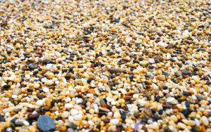 Beach Pebbles by nkear5