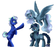 Comm: Snow Pony Trio by pridark