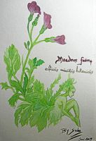 Meadow fairy (watercolours) by SuluMansonNosferatu