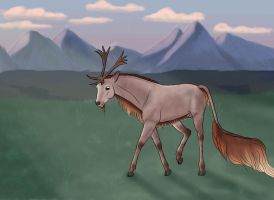 Zoeken | Stag | Wanderer by Howlingreaches