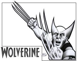 WOLVERINE- Nov. 2010 by KSowinski