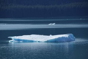 DSC03060 Icebergs, Tracy Arm by VIRGOLINEDANCER1