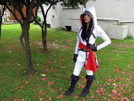 Assasin Creed Female by nkloud