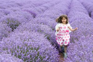Eva in lavender field by prolet