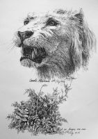 Lion and bush Study by LotharZhou