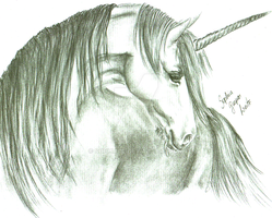 Another Unicorn by SophiaGL