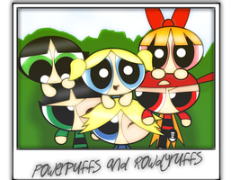 Polaroid - Ppg's and Rrb's by 6ninjafox9