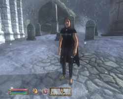 My Character in TES IV Oblivion #2 by Chernandez2020