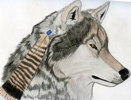 Feather Wolf by Astrid-Onyxwolf