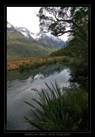 Mirror Lakes, New Zealand by eehan