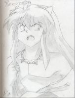 Inuyasha is teh sexy XD by katiebobbaseball11