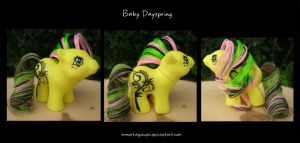 Baby Dayspring by ImmortalPanda