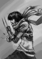 Assassin girl. Yes. More. by TheBoyofCheese