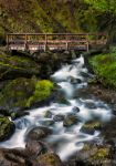 McCord Creek by jacolynca