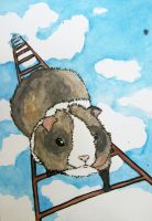 a guinea pig climbing a ladder by like-textas