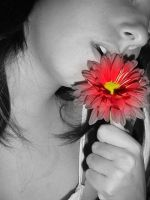 Red flower by RatitaDeCampo