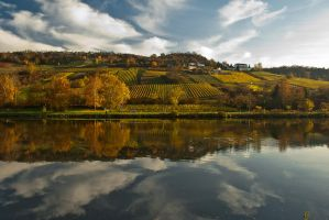 Mosel river side by FastDevil76