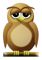 Owl by comino69