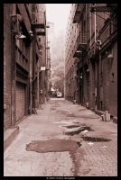 The Alley by MushroomMagic