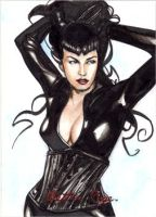 Bettie Page 1613 by Csyeung