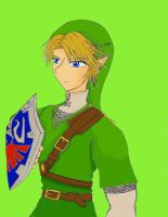 Link The Hero of Hyrule by Paladin0