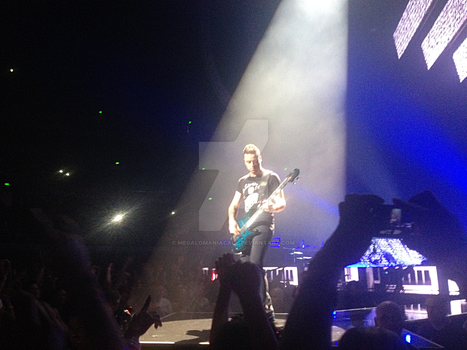 Muse Concert 13/12/13 - Chris Wolstenholme by Megalomaniacaly