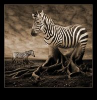Earthbound Zebras by Ryuneo