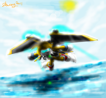 flying at the sea by zhenghwang