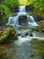 Ricketts Glen State Park 65 by Dracoart-Stock