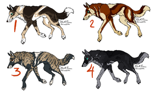 Canine Adoptables 2 -CLOSED by Cloverpatch-Adopts