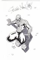 Spiderman by MrStevenTaylor