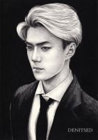 SEHUN [EXO] by DENITSED