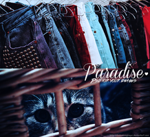 Paradise PSD - For Your Images by TutosImaginePC