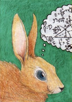 ATC Bunny Math by tursiart
