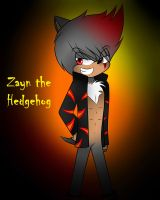 Zayn the Hedgehog by Moonlight5Hedgehog