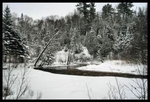 Winter at Stokely by NOS2002