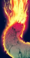 combustion by AtomicFishbowl