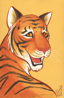 color sketch - Tiger by Lizzie-Bean
