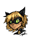 Chat Noir by embercl