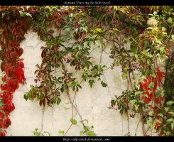 Autumn Vines BG 03 by ALP-Stock