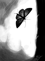 BW moth tegaki.e by BLACK-CROWN