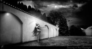 Dancing in the Moonlight - She said she was a danc by ferobanjo