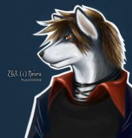 Neiera's ZYX by PsychedelicMind
